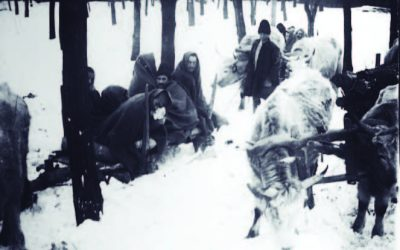 The refugees of Muntenia in Iași. The terrible winter of 1917-1918: there was no more wood, not even for coffins (Part 3)