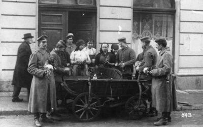 Life behind the front: German soldiers in occupied Romania. Gerhard Velburg's diary